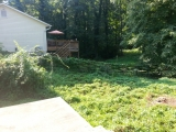 <h5>Overgrown Lot</h5><p>Yard was overgrown with ivy, wasps, and groundhogs had made holes everywhere</p>