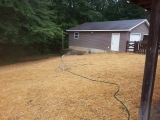 <h5>lot clearing 2</h5><p>picture of the garage after overgrowth was removed</p>