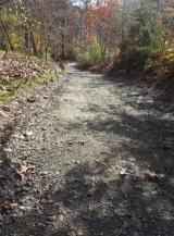 <h5>gravel driveway repair</h5>